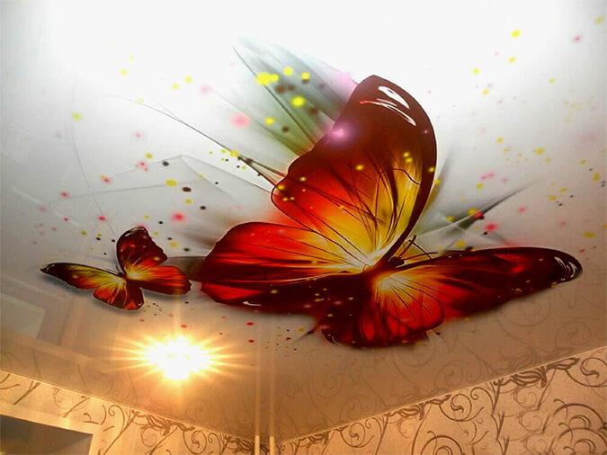 Бабочки фотопечать на потолке с шутерсток
