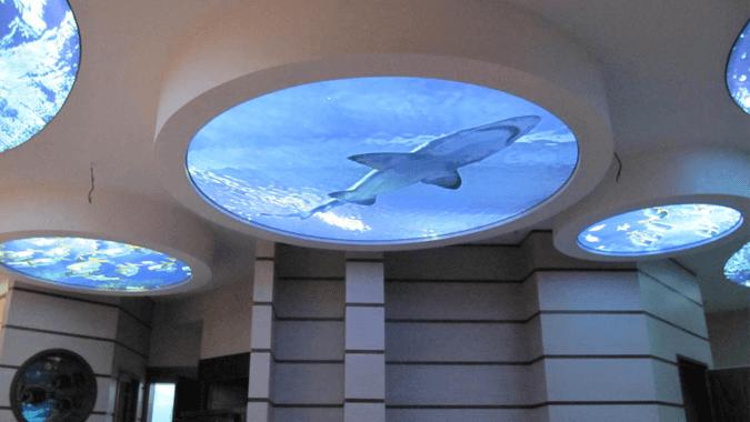 Светопрозрачный потолок аквариум