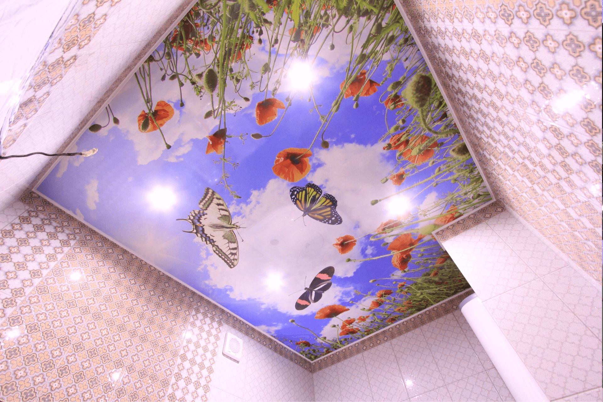 Натяжной потолок с фотопечатью бабочки в поле в ванной
