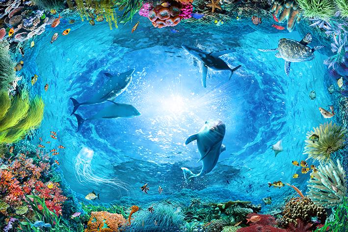 Дельфины 7