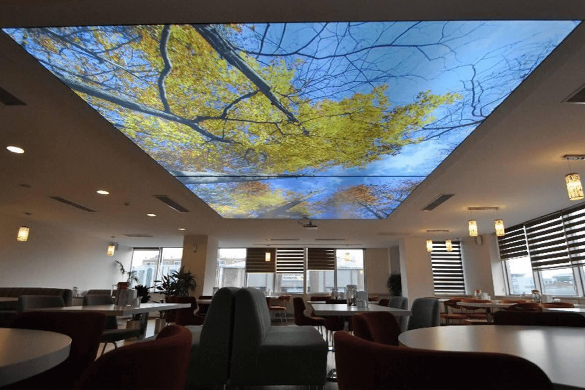 Фотопечать с подсветкой деревья на натяжном потолке в офисе