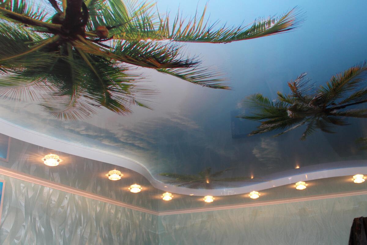 Пальмы на натяжном потолке