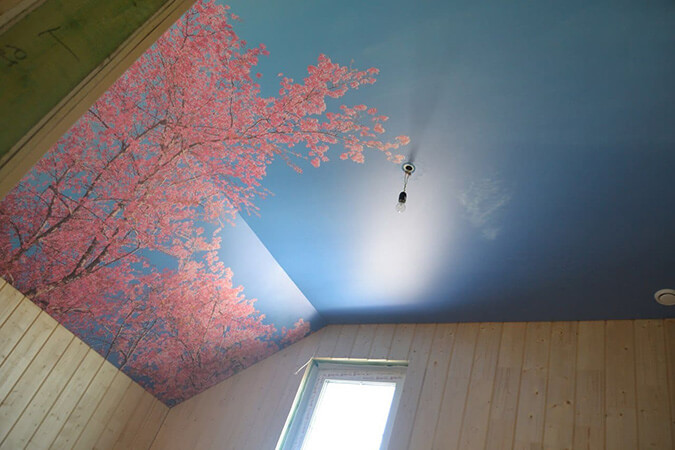 Фотопечать на натяжном потоле в доме